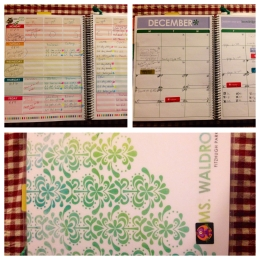 My teacher planner from Erin Condren